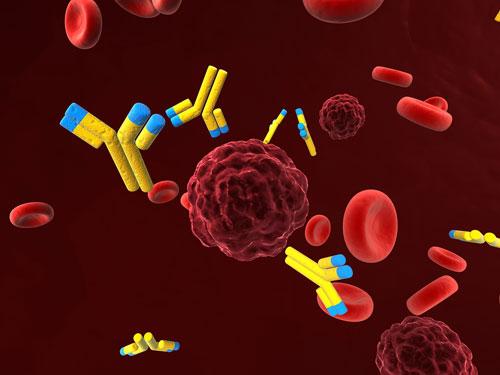 Cancer genetics, cancer cells