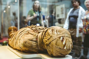 Microbiome study of Mummified remains